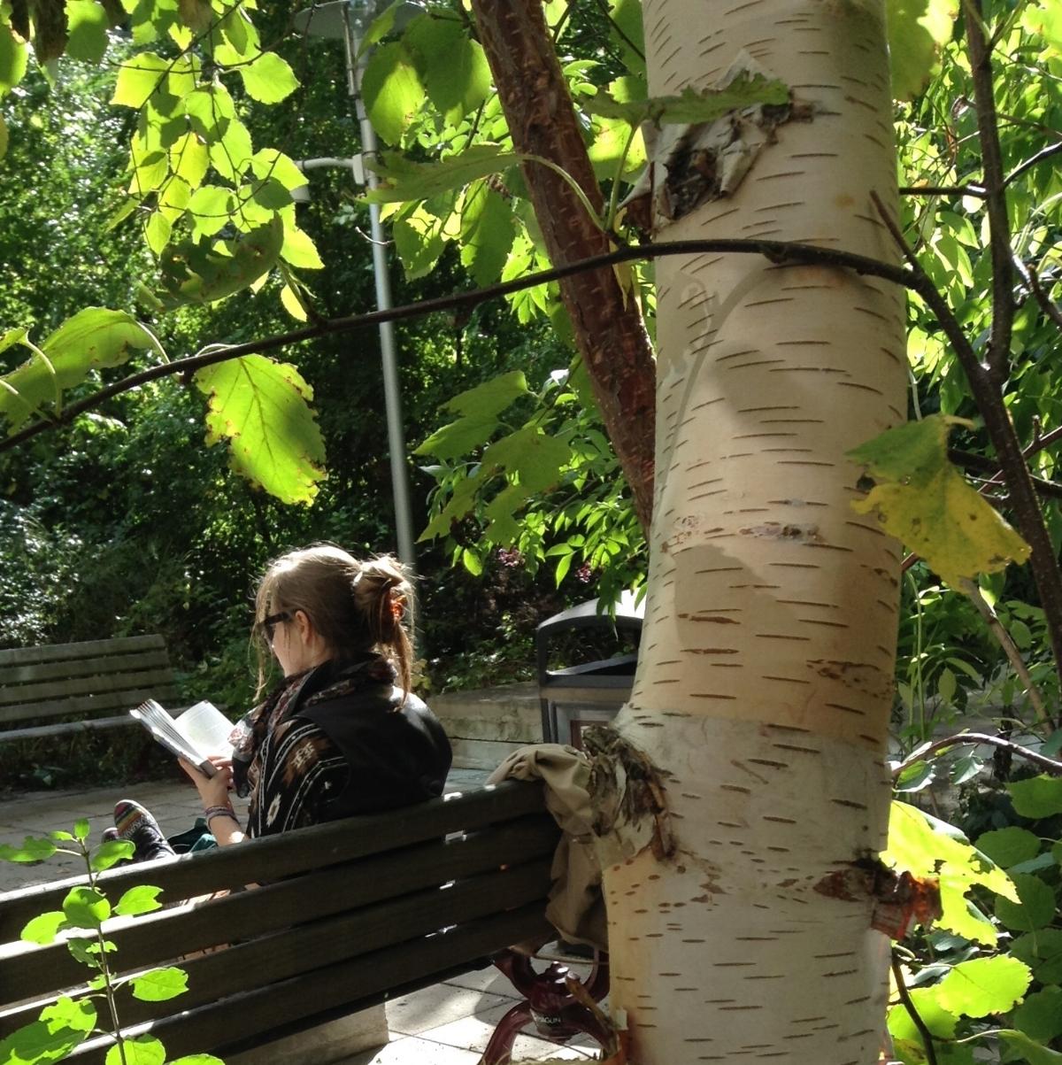 Visitor at the Husky Energy Courtyard, University of Ottawa. Photo: Renate Sander-Regier