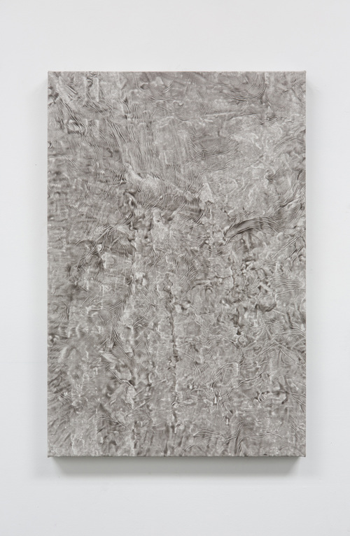 CALLUM SCHUSTER | AKIN TO SKIN 5 | 36 x 24 in |   INQUIRE FOR PRICE