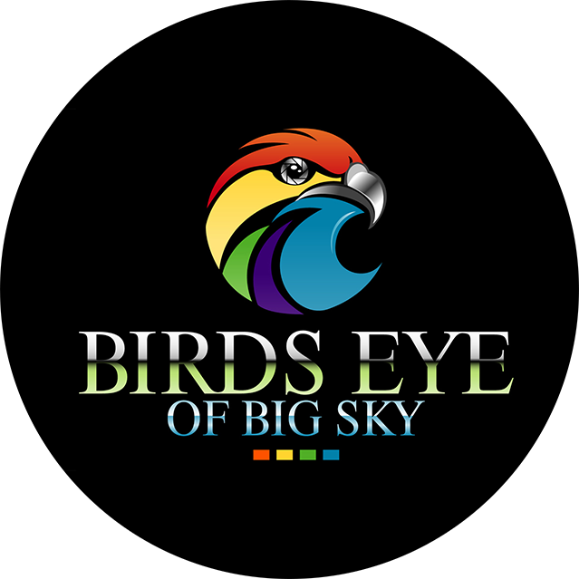 BirdsEyeDroneVideographyFilm