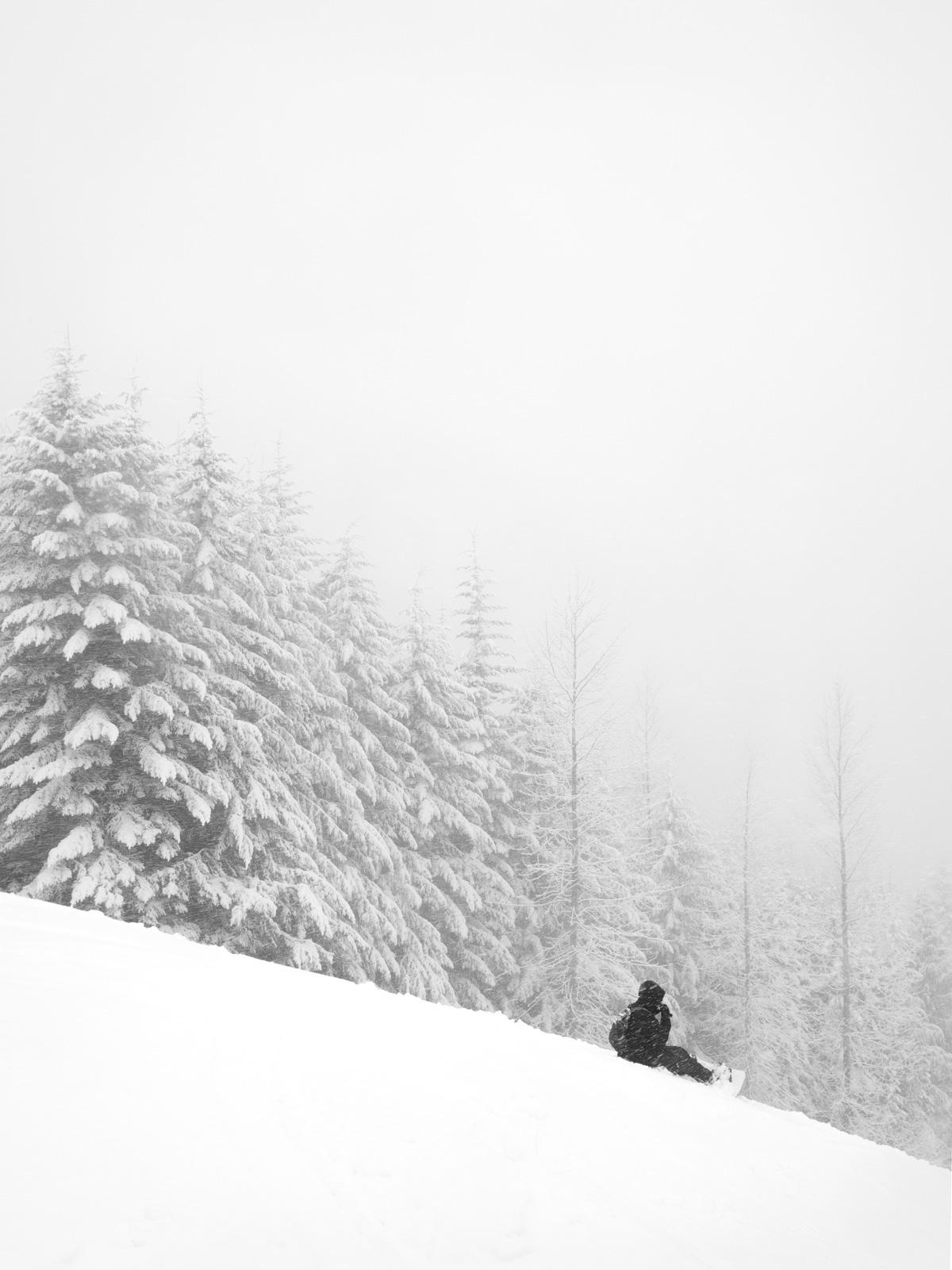 Skiing V, 2018.