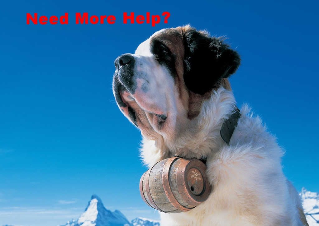 St-Bernard-dog.jpg