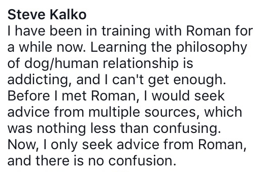 Steve Kalko - New Beginnings Kennels Ohio.  -