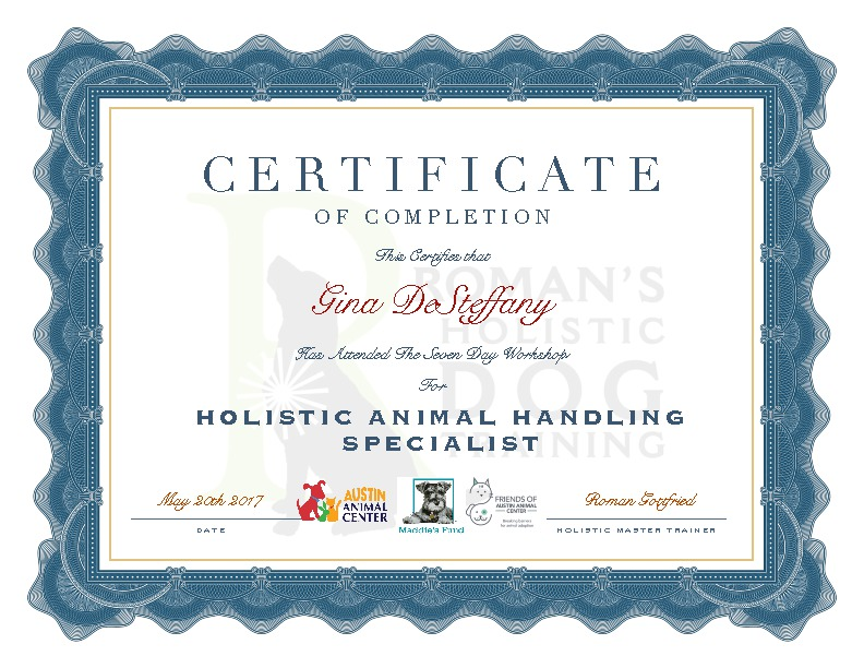 certificate_aac_gina_desteffany_phpLo90j0.jpg