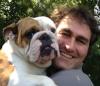 RomanBulldog.jpg