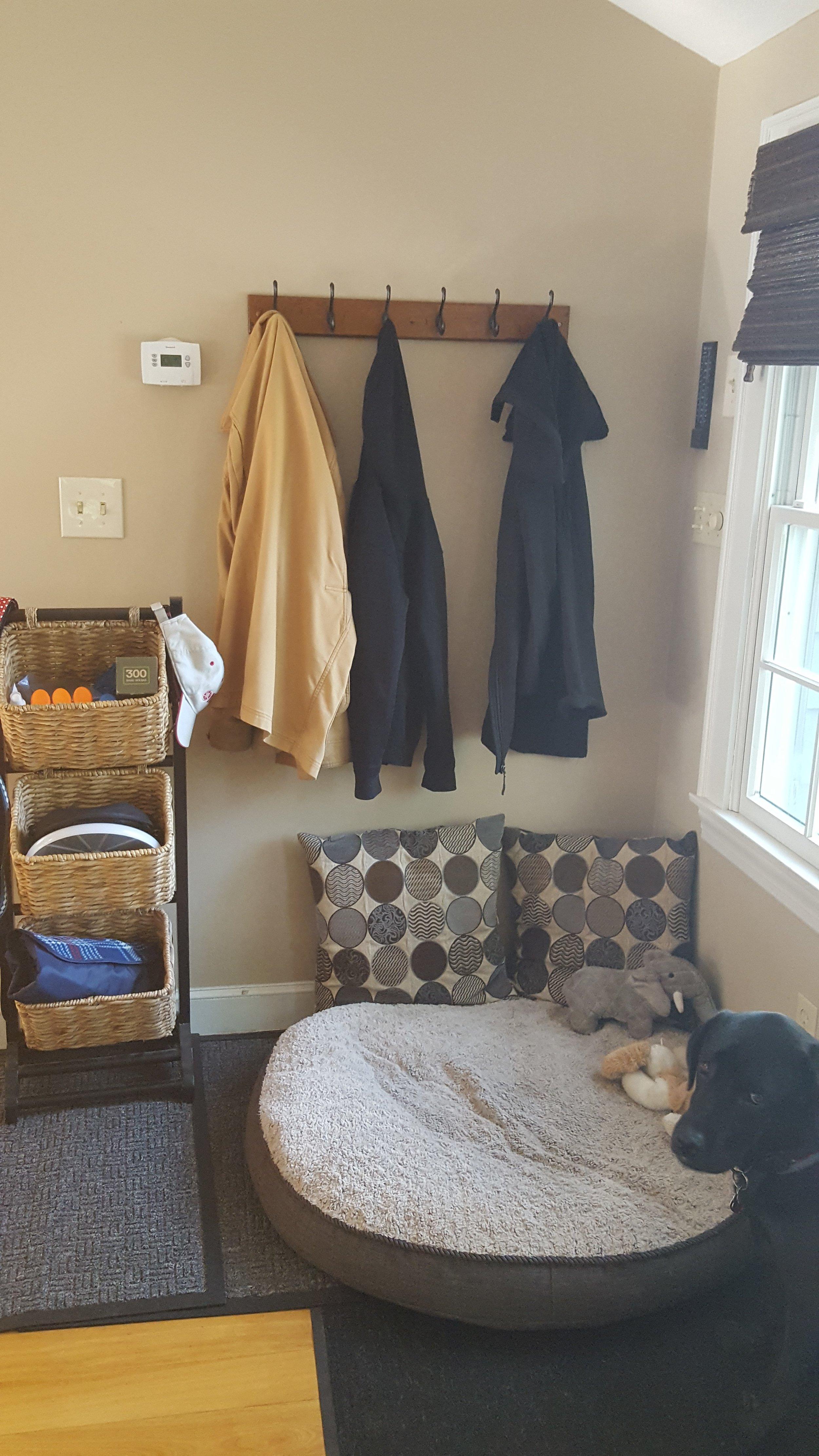 multiple use area....pets and people stuff!