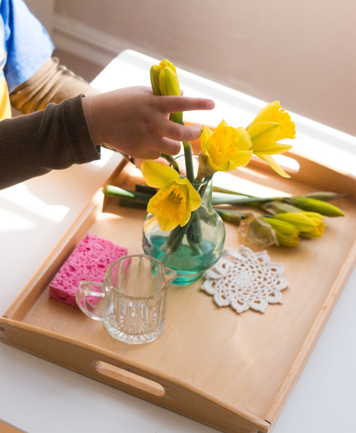 daffodils_montessori_flower_arranging2.jpg