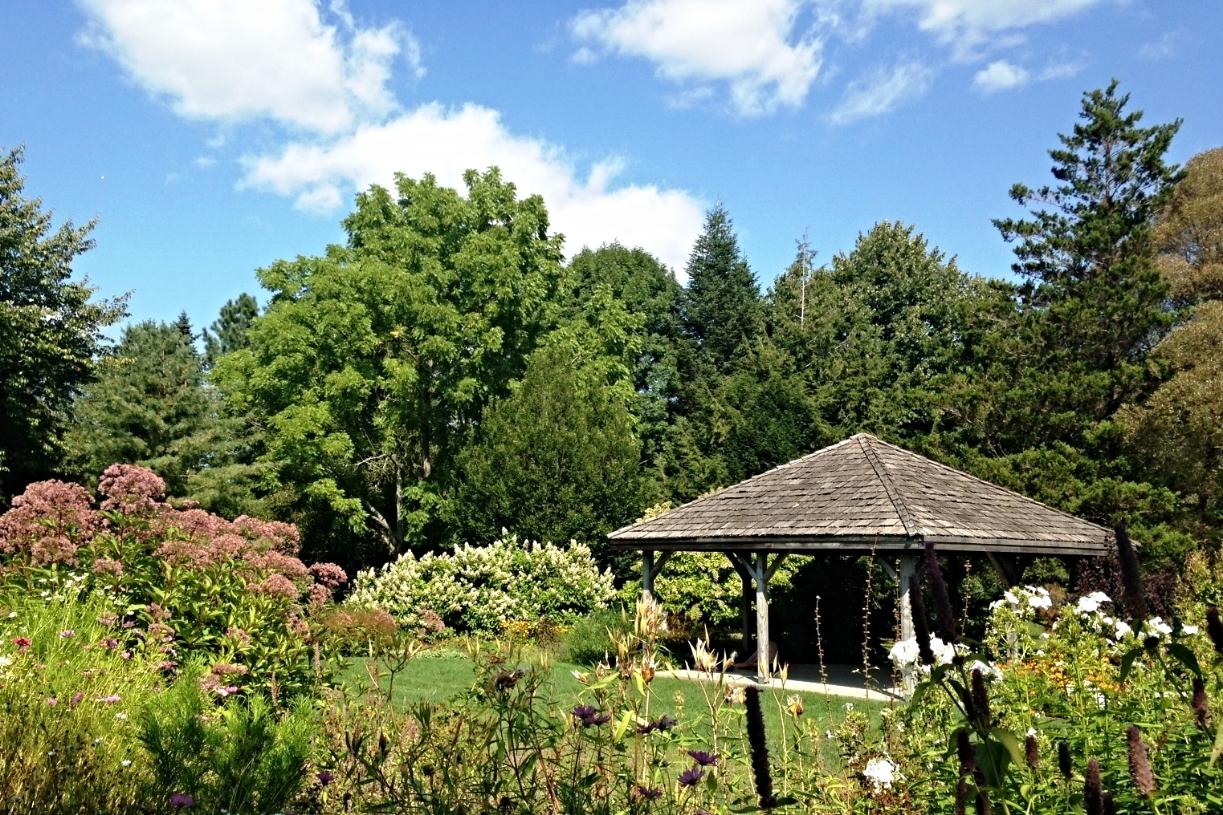 the lovely gardens!