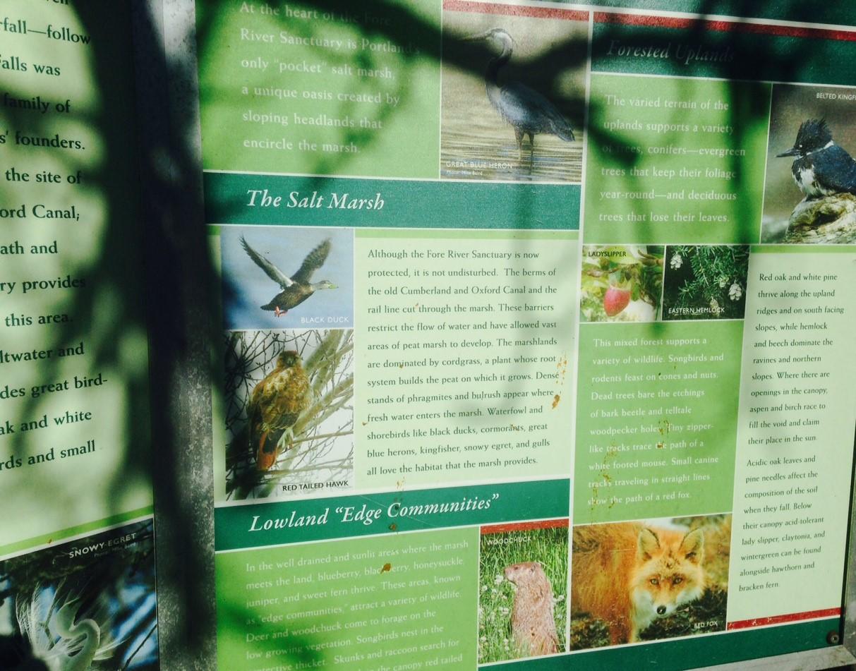 habitat and wildlife in abundance