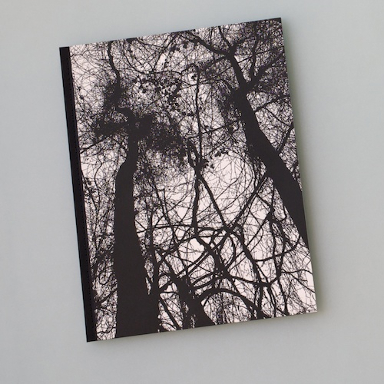 Idyll/Pastoral (2011)