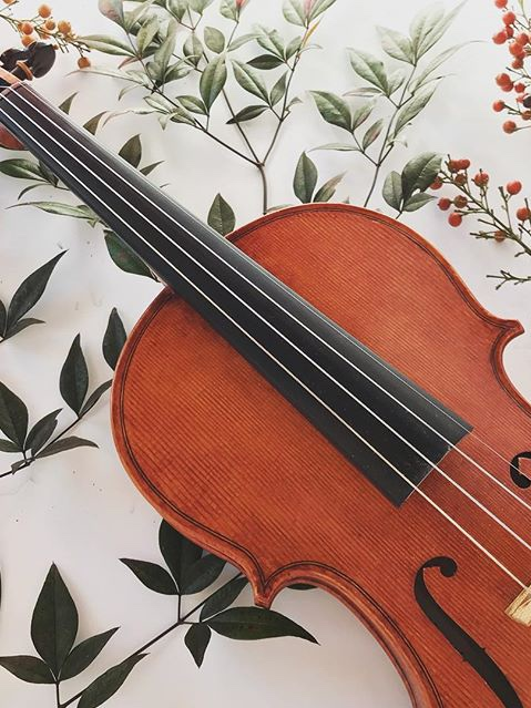Handmade Violins start at $8,000 -