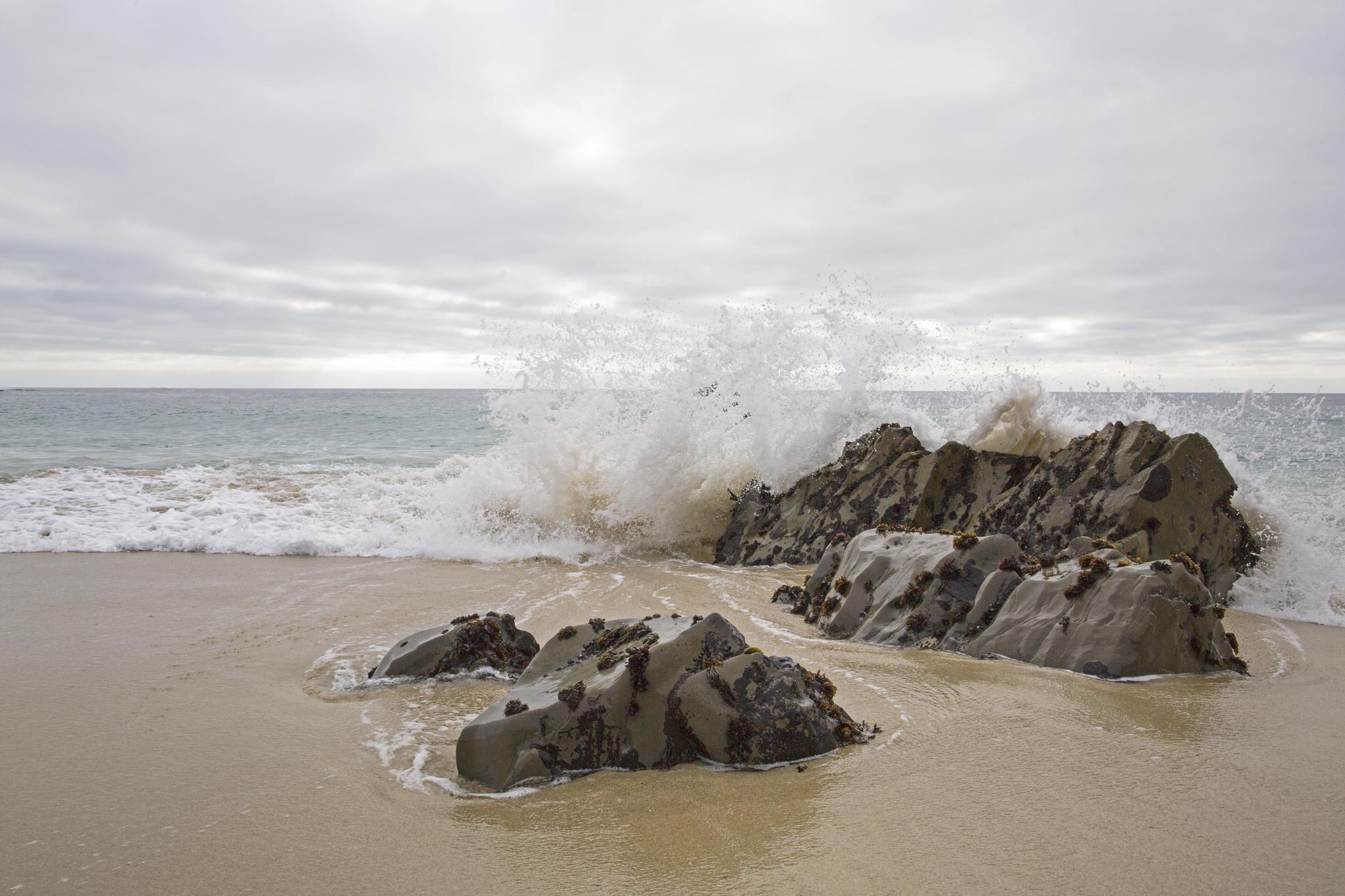 Splash-FB.jpg