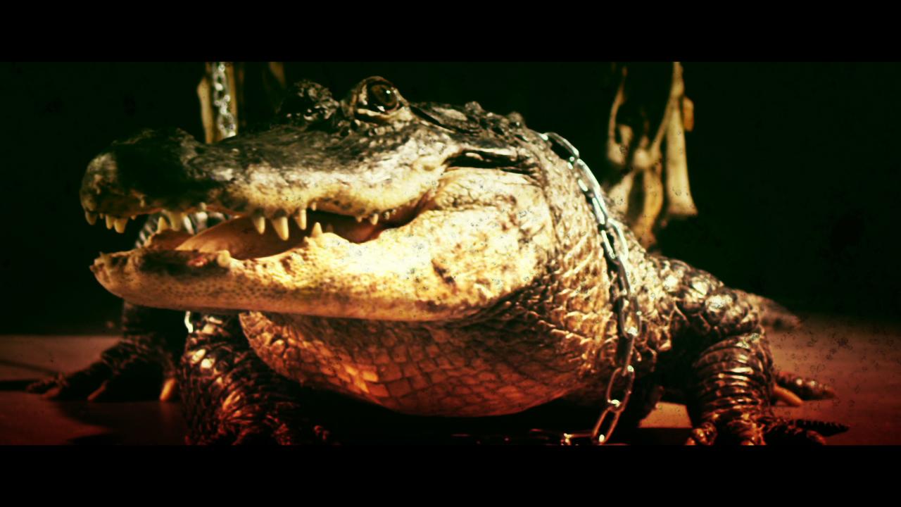 BMTH_AlligatorBlood_Still09.jpg