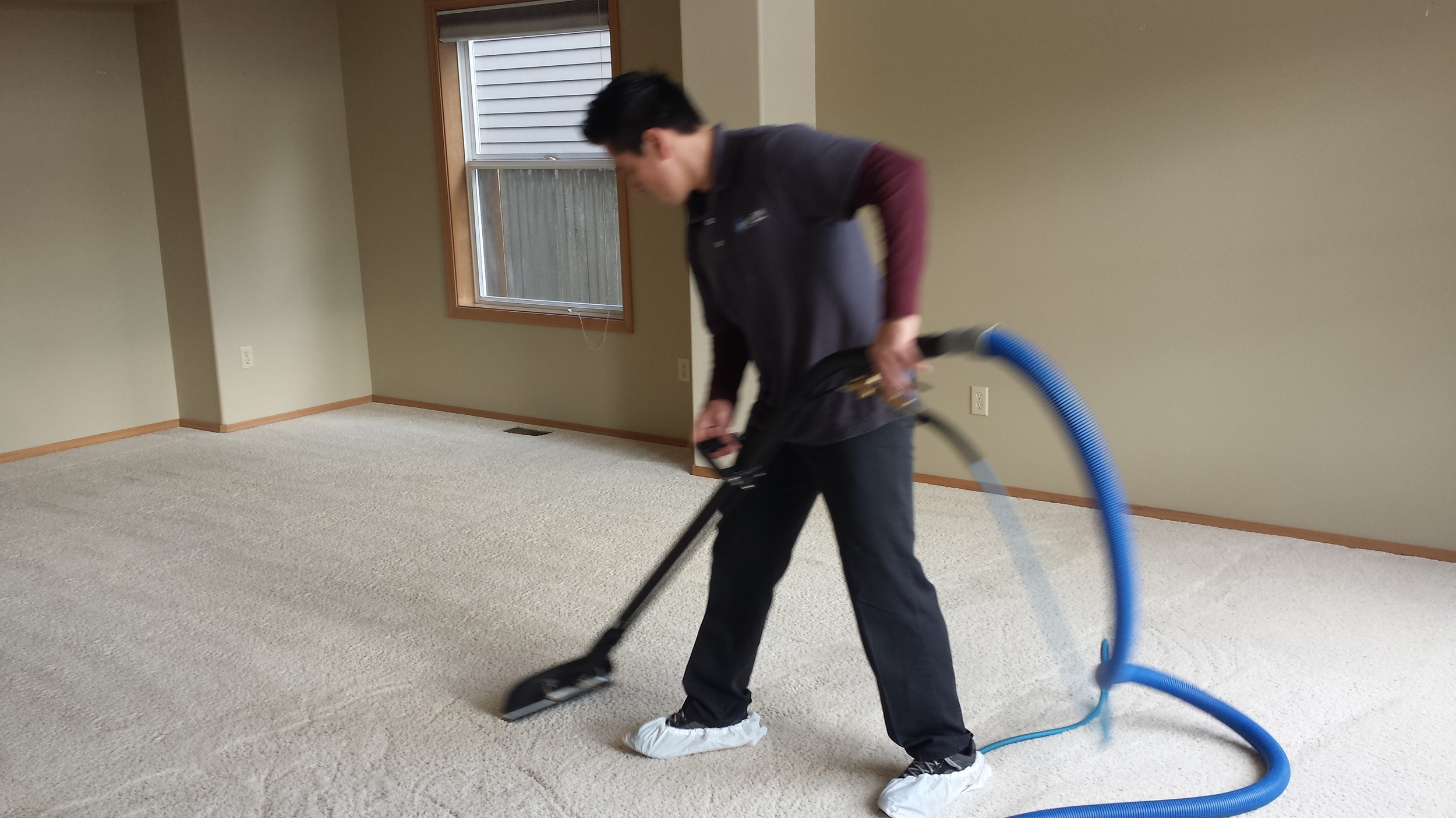 Professional carpet cleaner actively cleaning white carpet