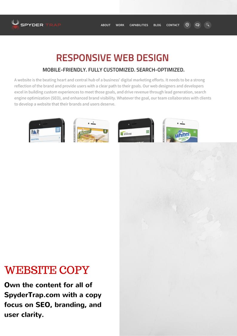 Web Copy - Spyder Trap
