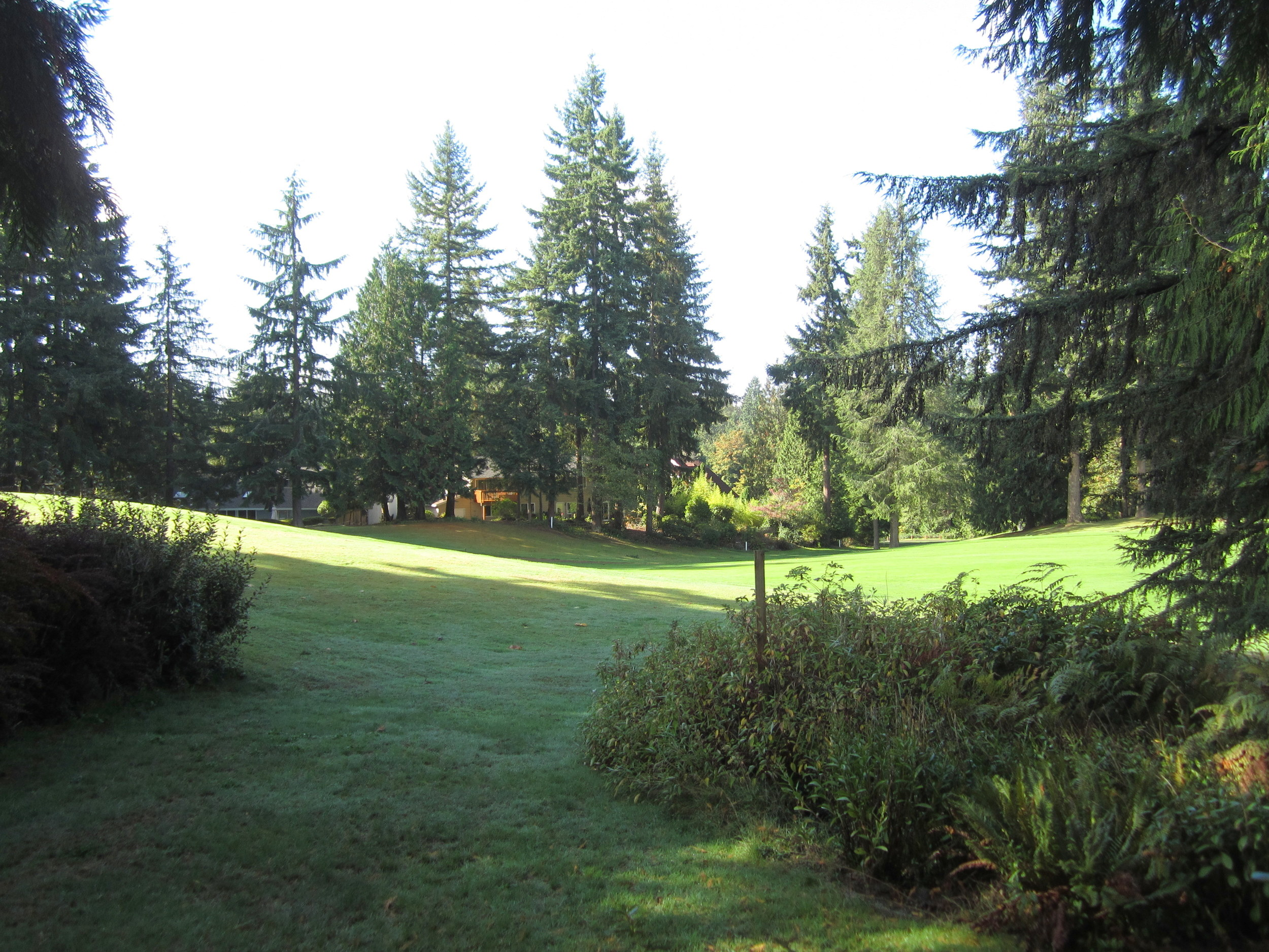 561-933522-golfcourseview.JPG