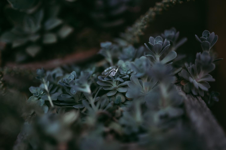 laura-beck-photography-lubbock-texas-478.jpg