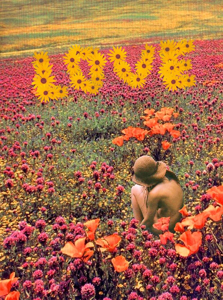 babyflower.jpg