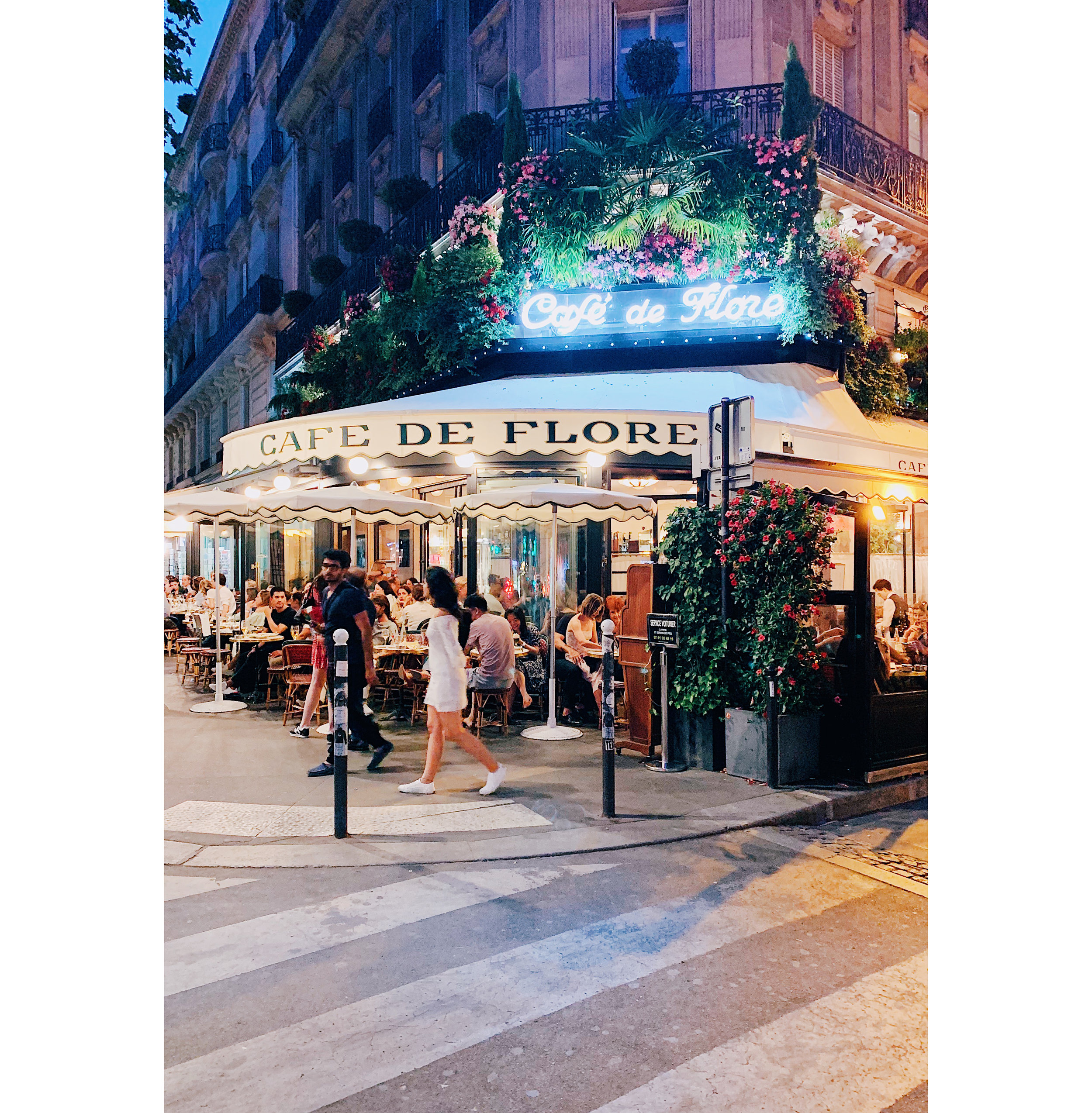 Paris 22 Cafe de Flore.jpg