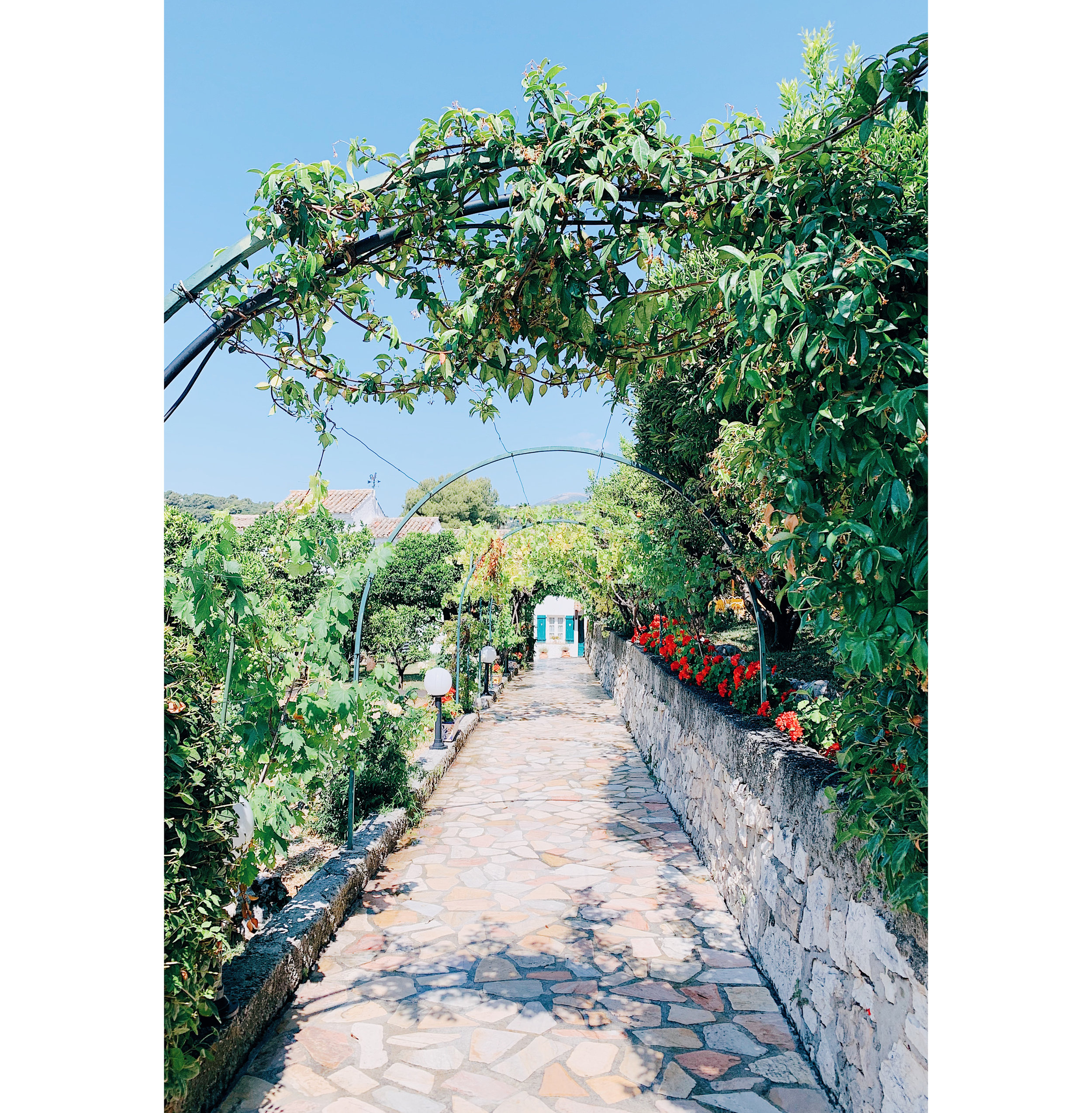 Provence 16.jpg