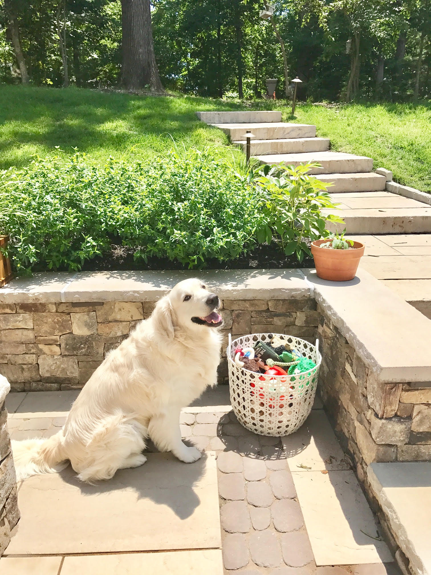 he seems quite pleased with his new outdoors organization.