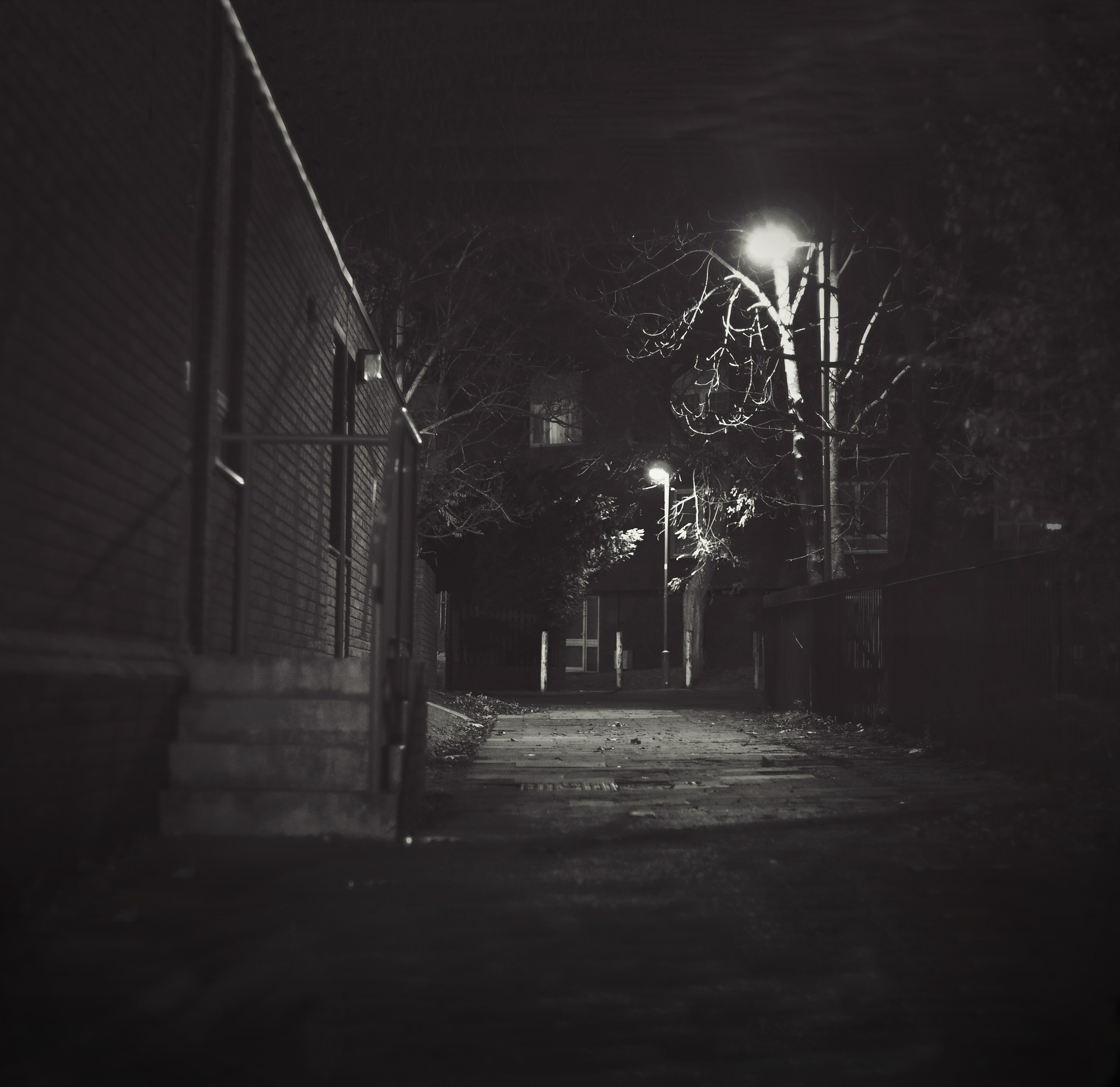 night-434244_1920 (2).jpg