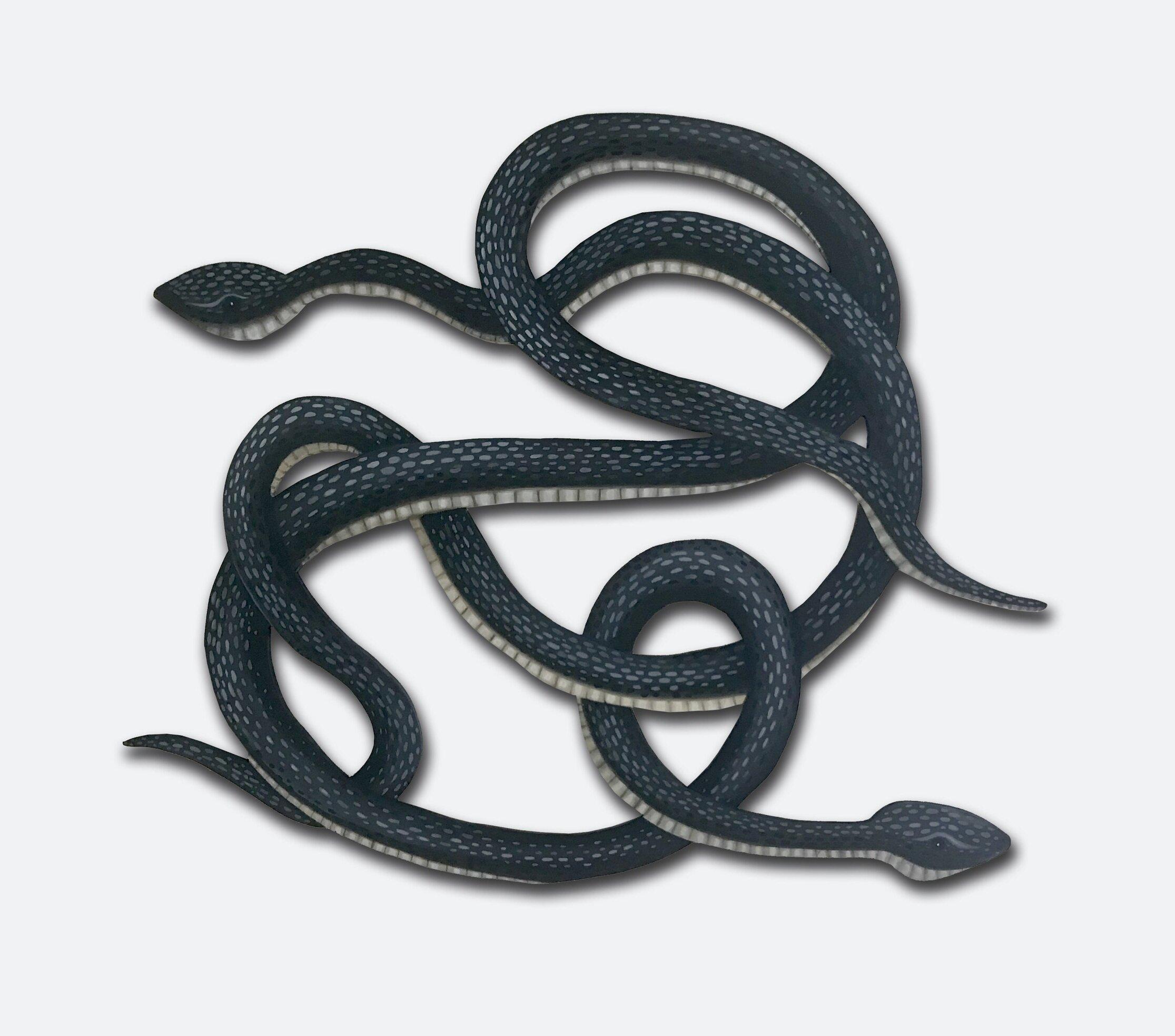 Tangled Snakes