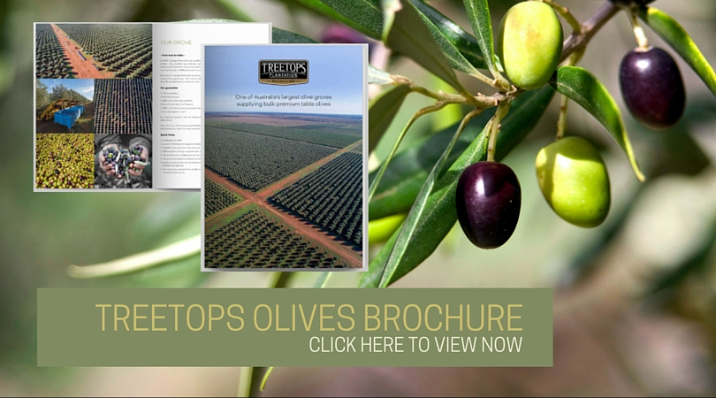 Treetops Corporate Brochure Click Here