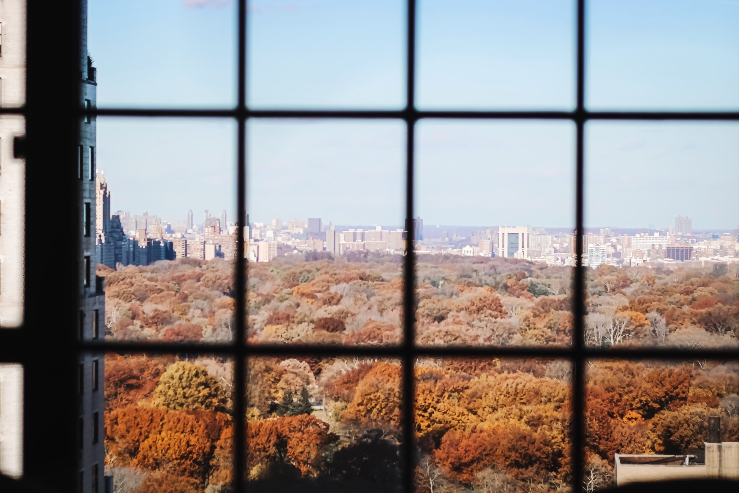 Viceroy-hotel-central-park-view
