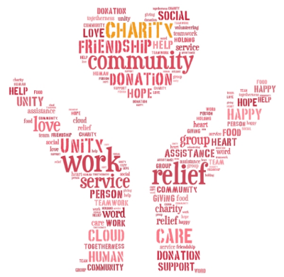 nonprofit representation