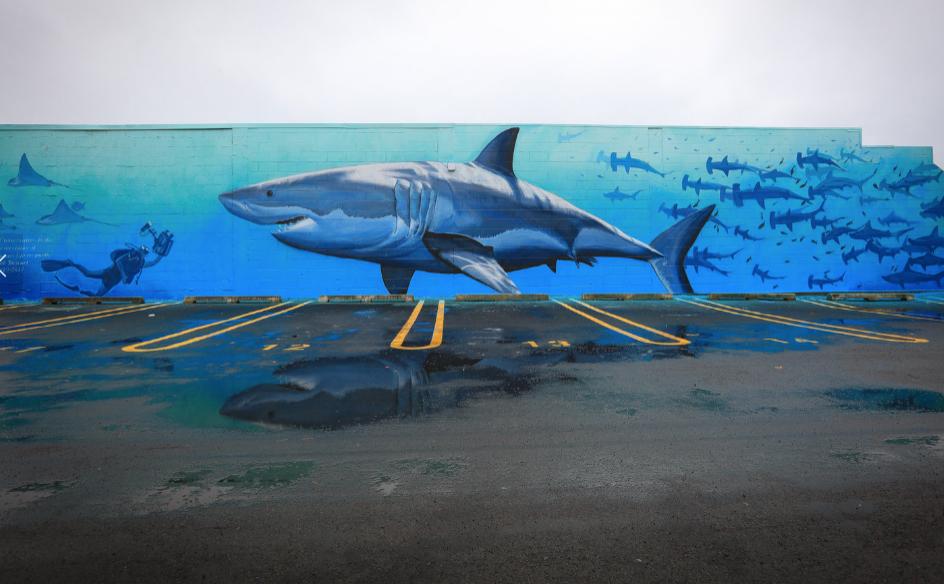 Mural by - Freedman White , New Zealand.