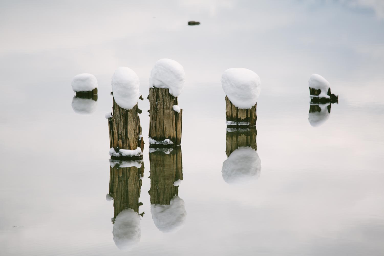winter-7351.jpg
