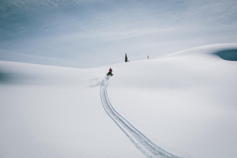 winter-9333.jpg