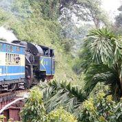Nilgiri Mountain Railway_8_Indian Train Journals.jpeg