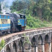 Nilgiri Mountain Railway_11_Indian Train Journals.jpeg