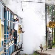 Nilgiri Mountain Railway_9_Indian Train Journals.jpeg