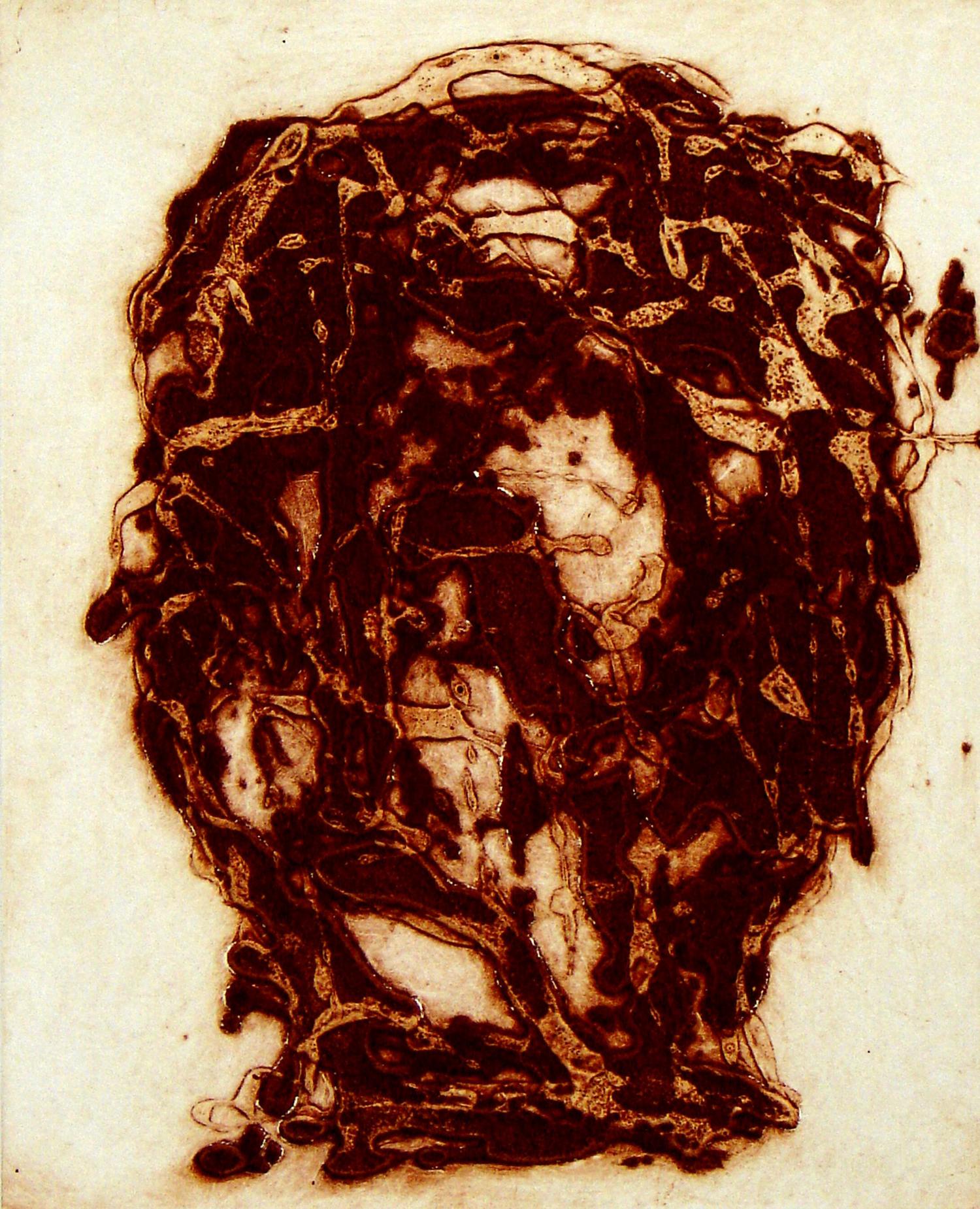 Peter Griffin Carborundum Head IV    Date:  2007   Size (cm - unframed):  45 x 35.5   Technique:  Carborundum Etching   Materials:  Moulin Du Gue 300gsm   Edition size:  6   Publisher:  The Artist   Copyright:  The Artist    P.O.A.