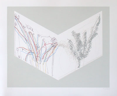 Claude Heath, Eucalyptus    Date:  2003   Size (cm - unframed):  66 x 80.5   Technique:  Screenprint   Materials:  Somerset UK textured paper - 300gsm   Edition size:  30   Copyright:  The Artist    P.O.A.