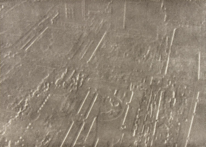 Jane Dixon, Regeneration III (Yokohama)    Date:  2007   Size (cm - unframed):  59 x 83cm   Technique:  Etching   Materials:  Somerset UK textured 300gm   Edition size:  20   Publisher:  The Print Studio   Copyright:  The Artist    P.O.A.