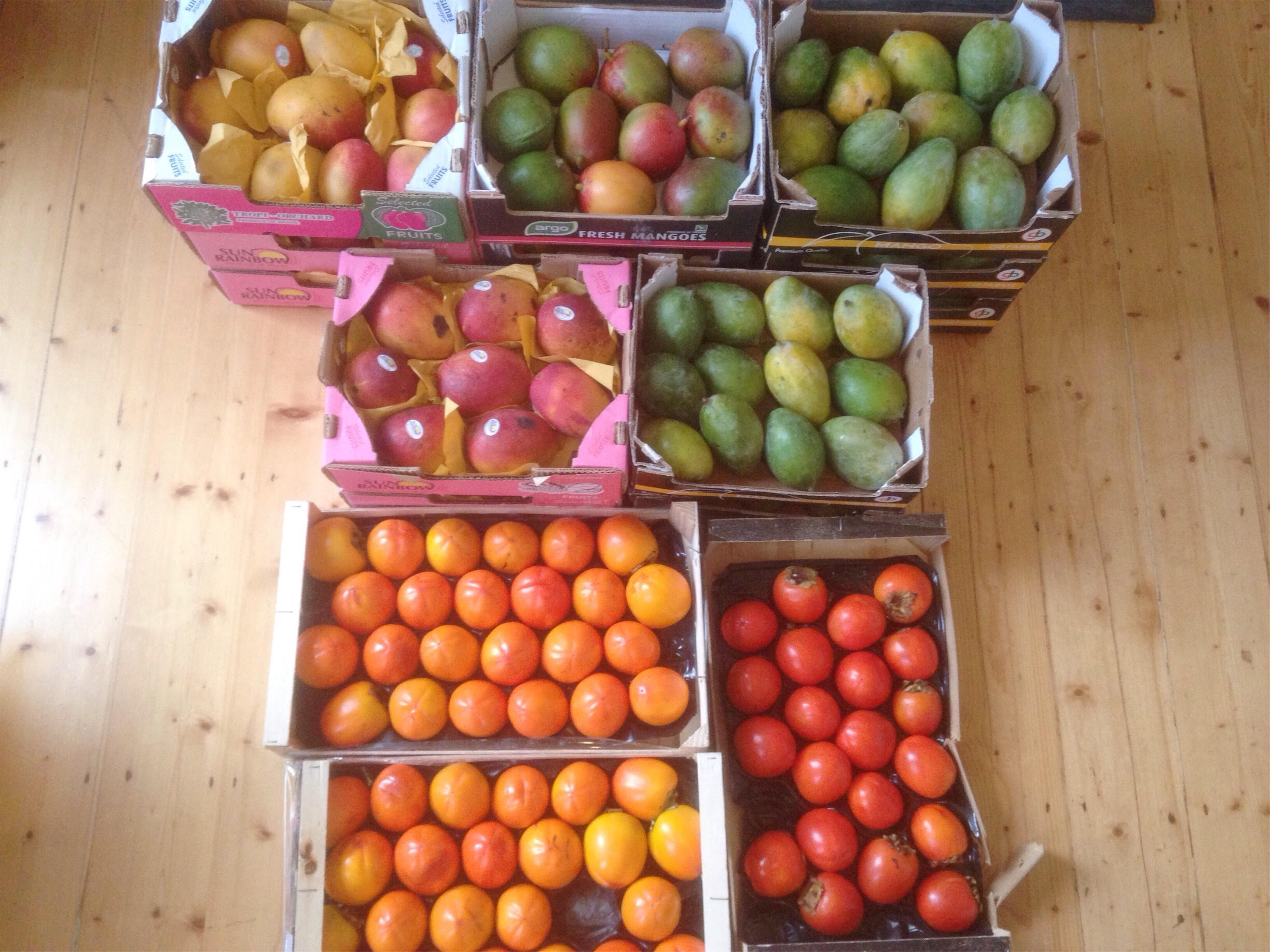 fruit_haul_25:17.jpg