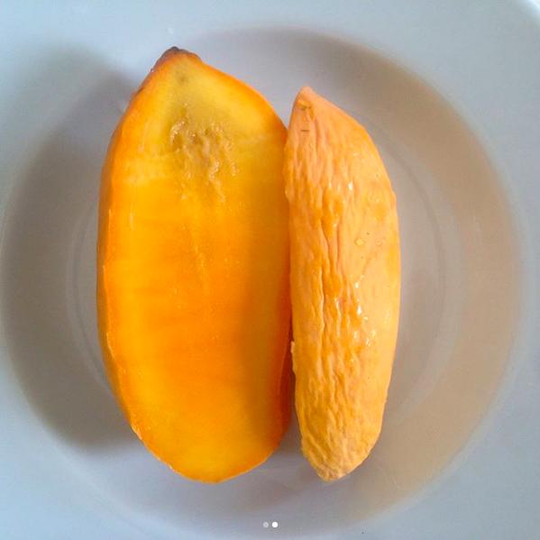 ataulfo_mango_1.png