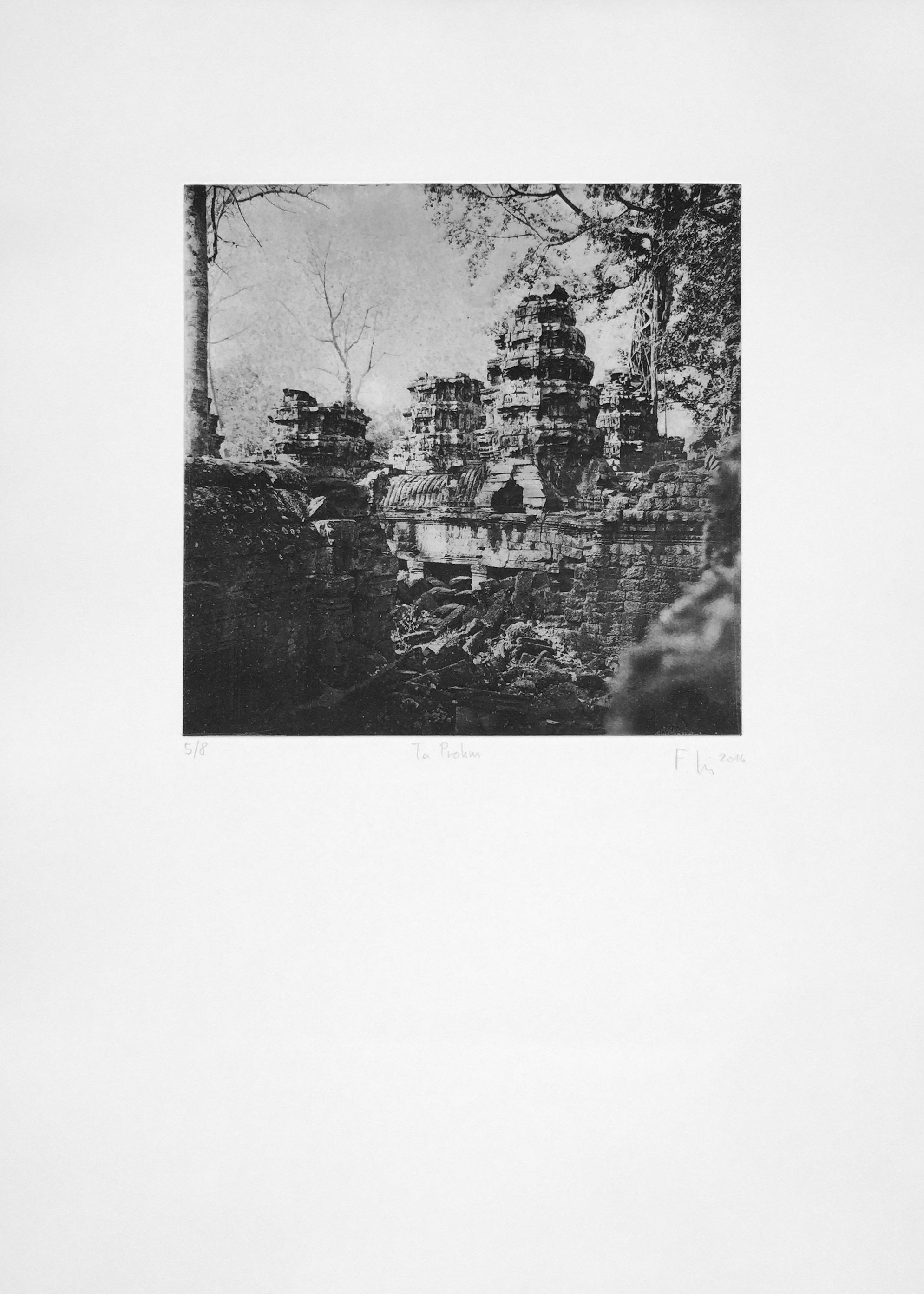 Ta Prohm (2016)  medium: Heliogravüre  size: 50 x 70 cm  paper: Zerkall 250 g/qm  plate: 30 x 30 cm  edition:12 copies  numbered: 1/8 - 8/8, 4 e.a.  printer: FWU