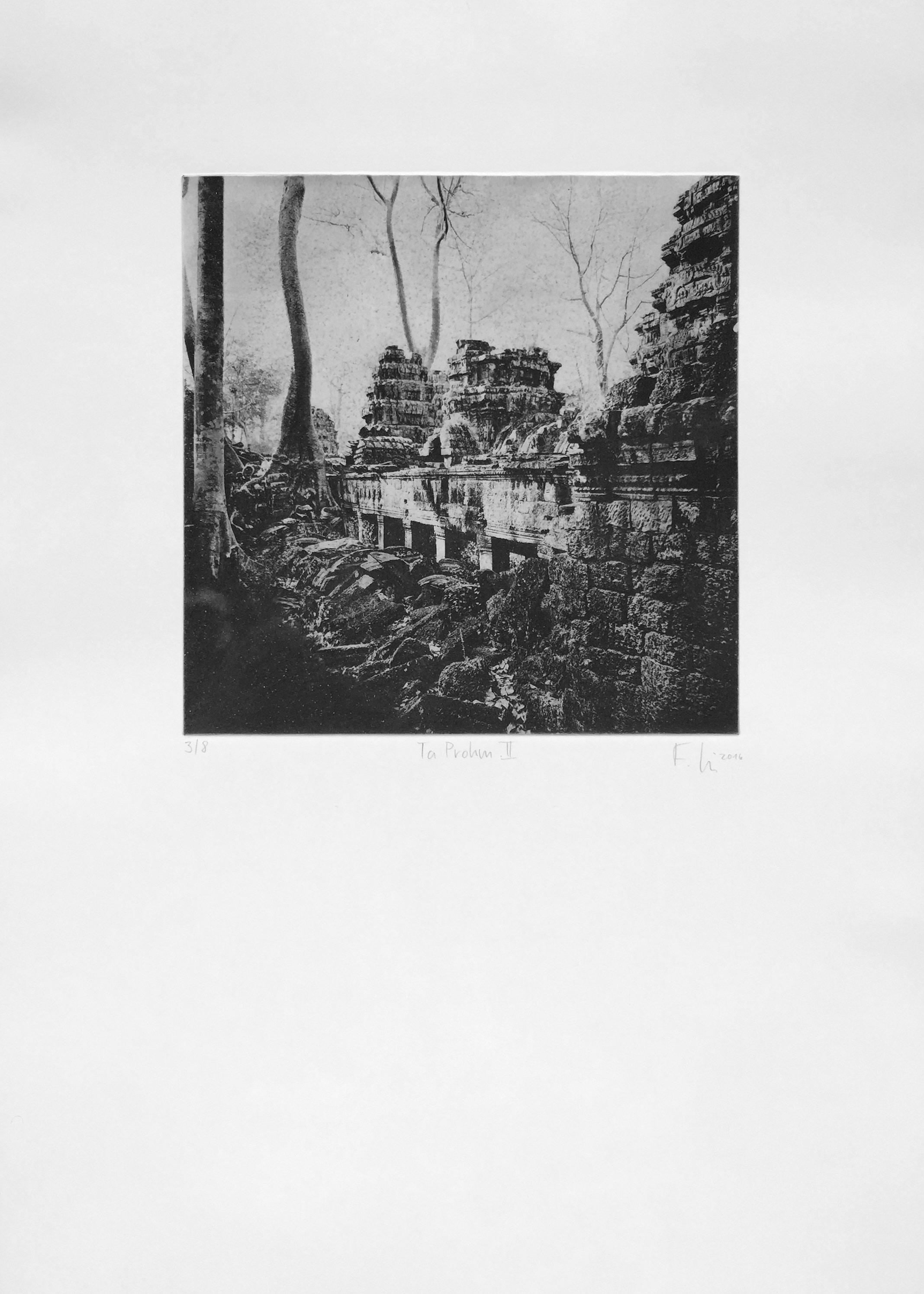 Ta Prohm II (2016)  medium: Heliogravüre  size: 50 x 70 cm  paper: Zerkall 250 g/qm  plate: 30 x 30 cm  edition:12 copies  numbered: 1/8 - 8/8, 4 e.a.  printer: FWU
