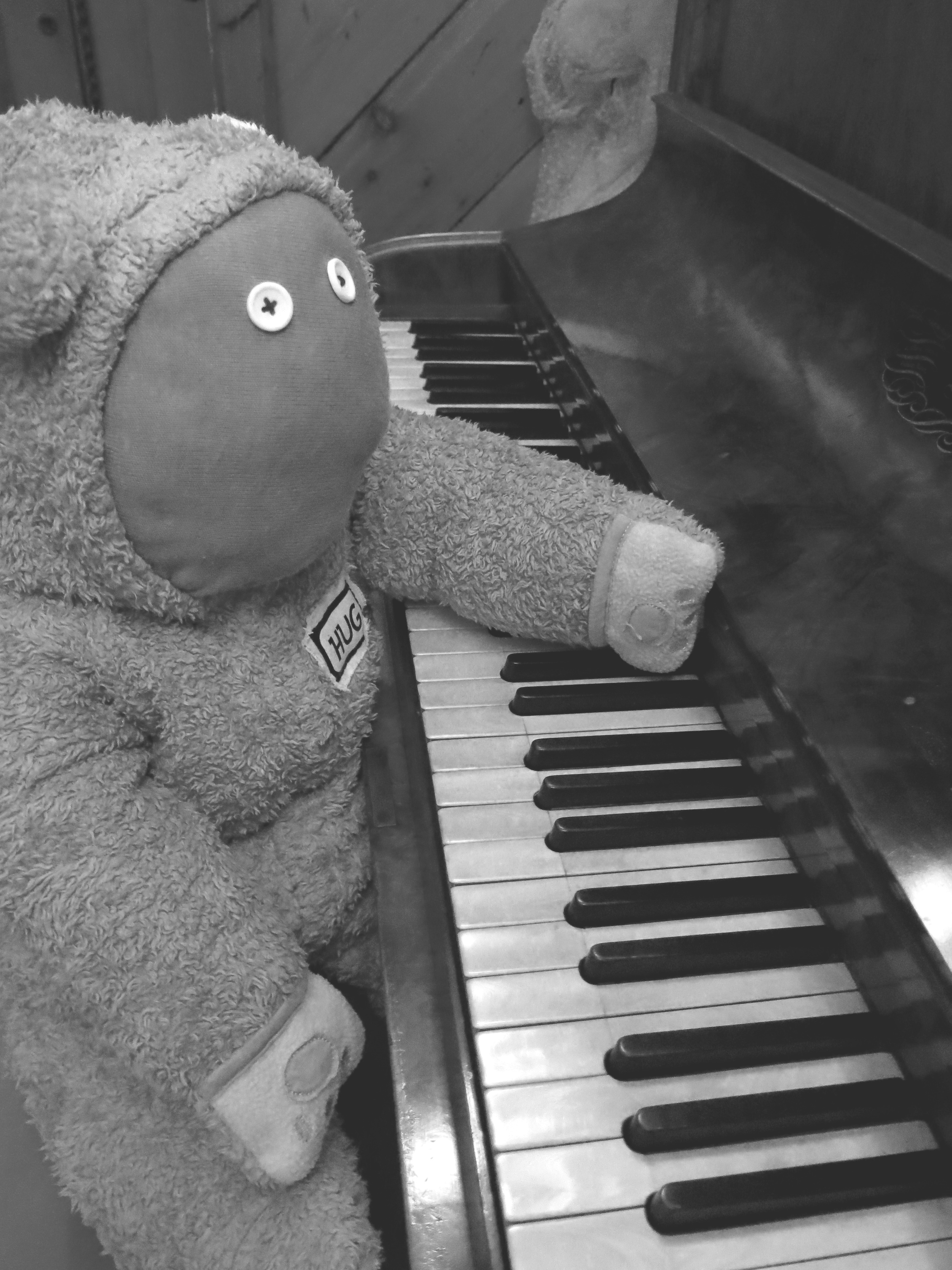 B & Whire piano bear 2.jpg