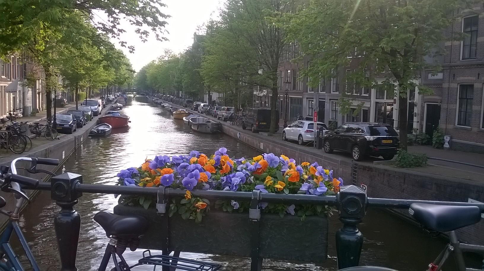 Olanda (5).jpg