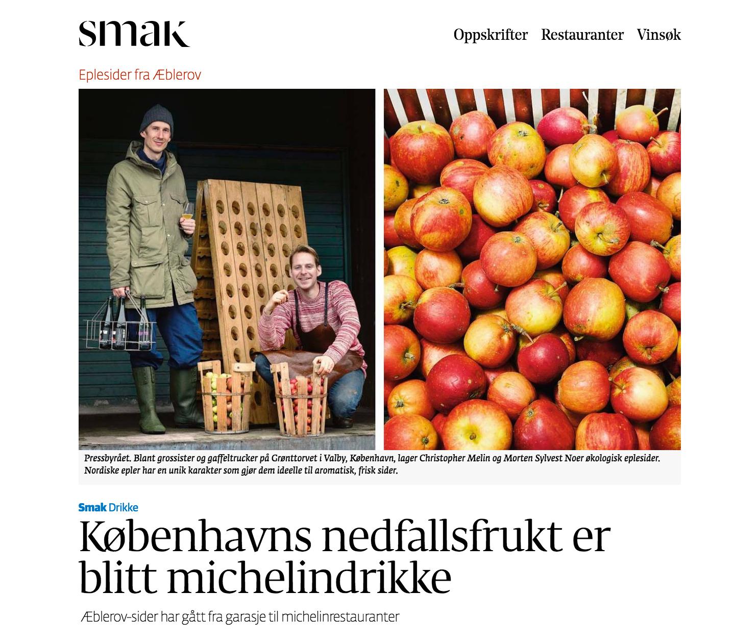 Dagens Næringsliv 19/11 2015