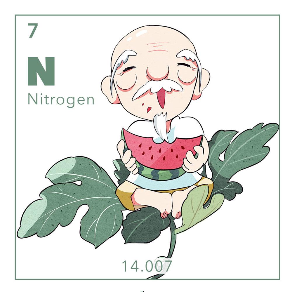 07-N-thumb.jpg