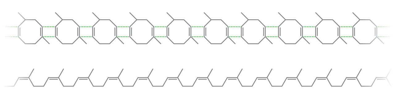 Top: early proposed structure of natural rubber made of small molecules. Bottom: polymer structure of natural rubber.