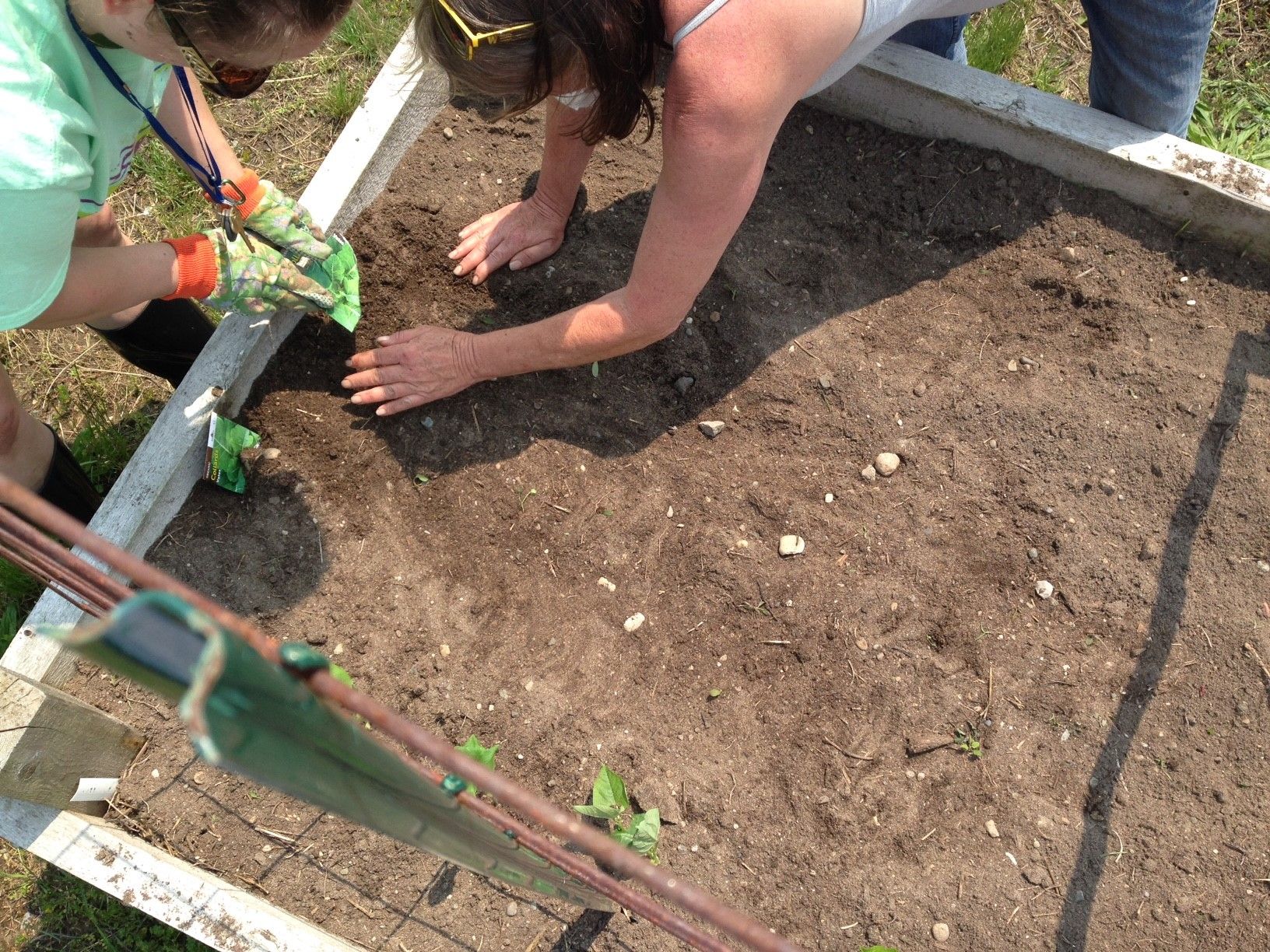20190531 Garden Planting 2.jpg