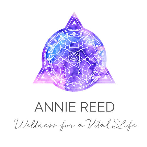 Annie_logo_final.jpg
