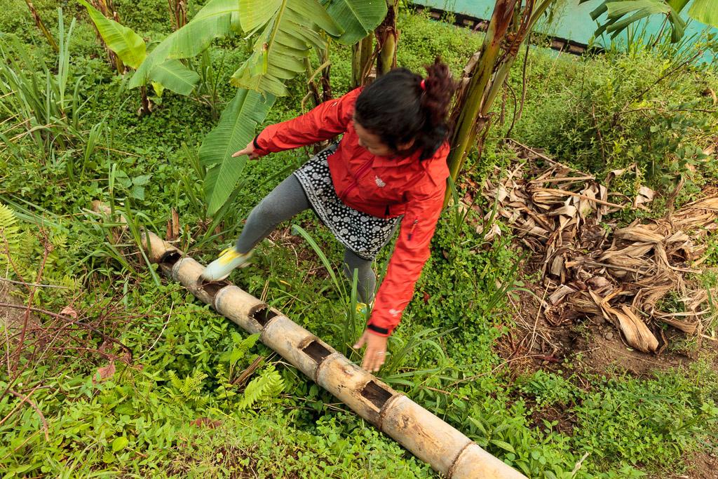 Rewati demonstrates a traditional bamboo ladder.